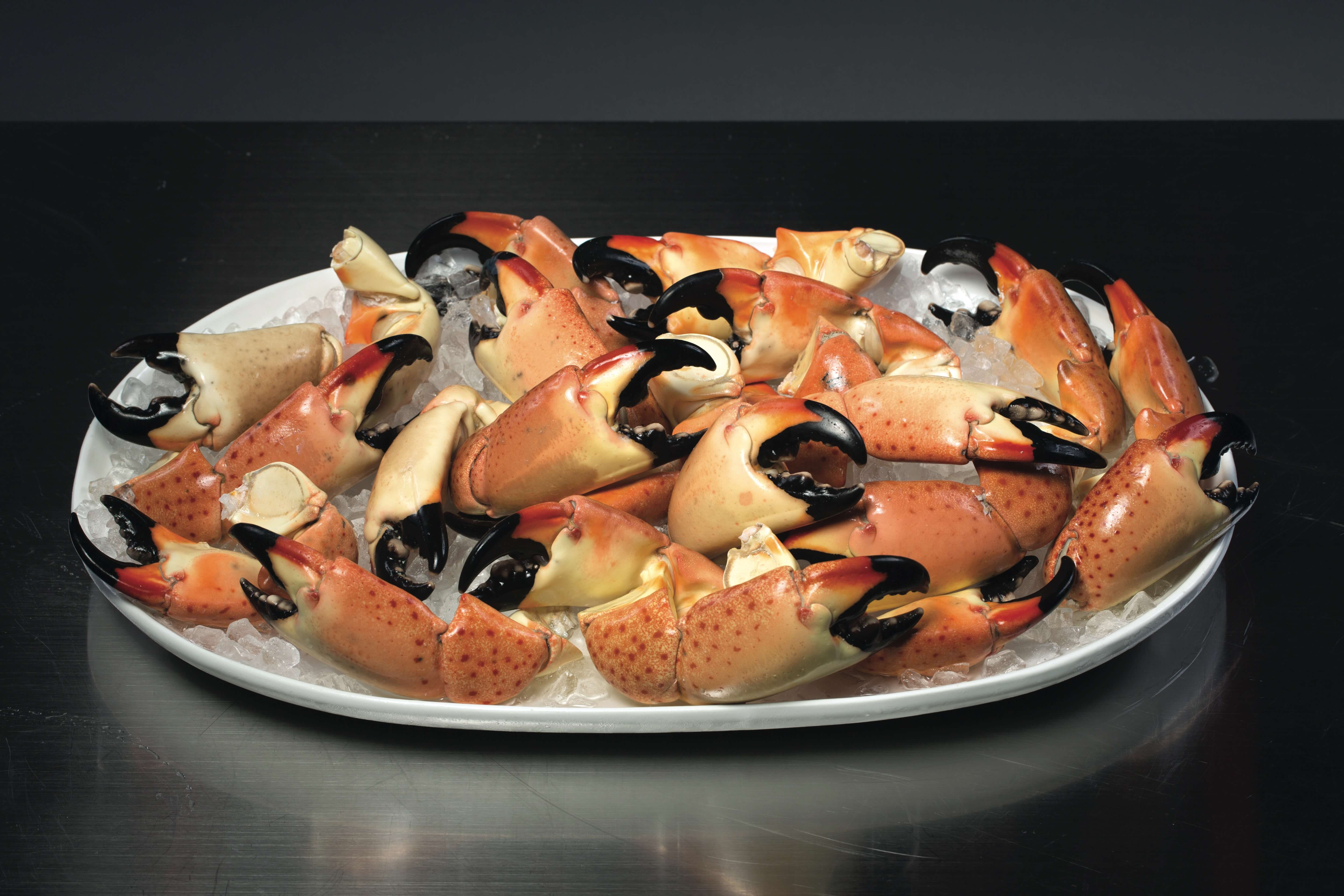 Platter of fresh crab claws on ice