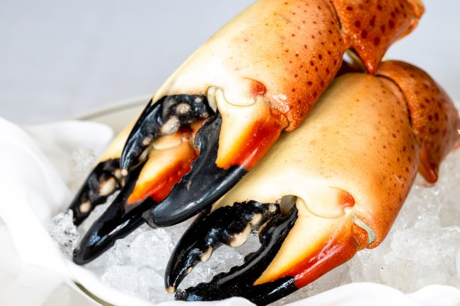 picture of Florida stone crab claws