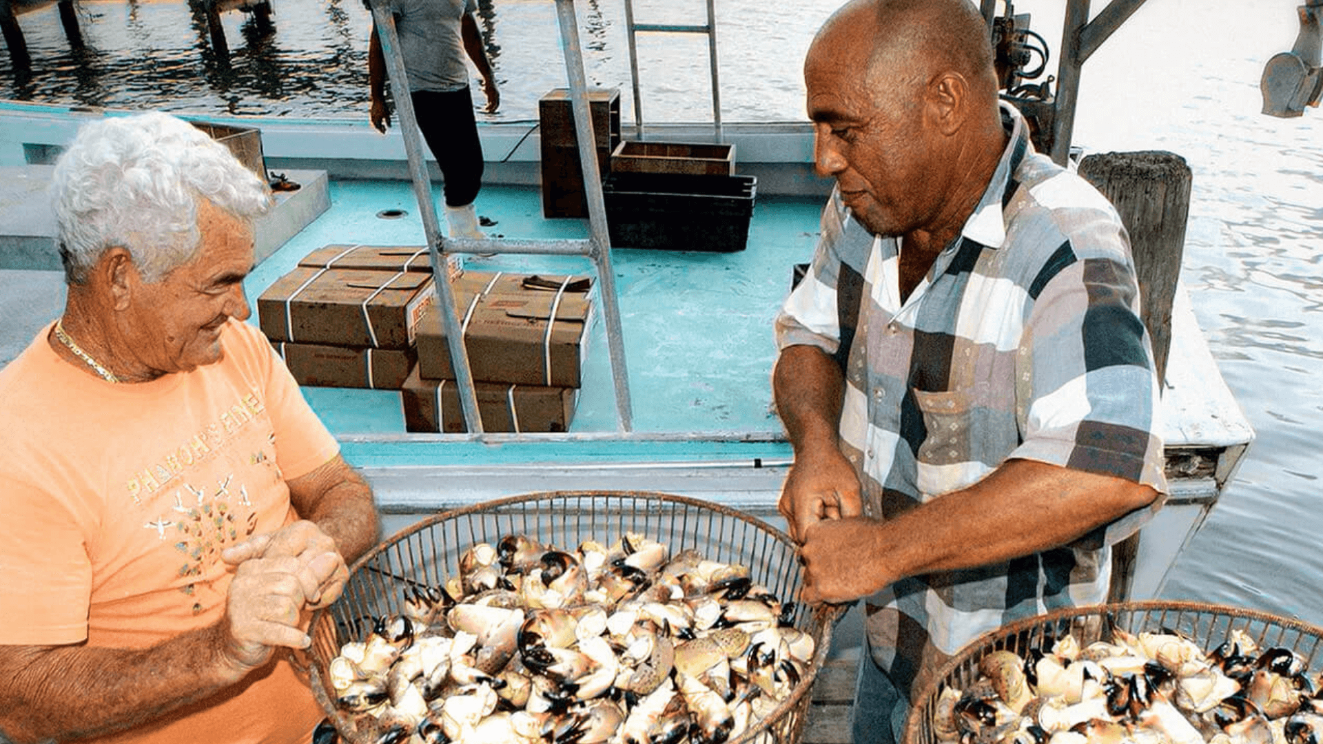 picture of Florida stone crab claw fishermen