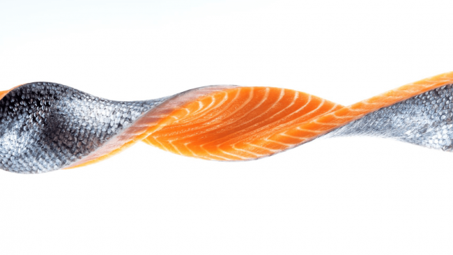 picture of Ora King Salmon